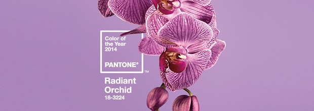 Color Pantone de l'Any 2014 – PANTONE Orquídia Radiant 18-3224