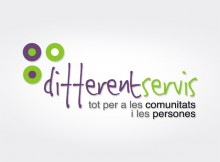 Different Servis Logo